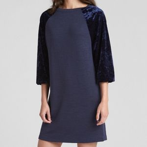 GAP Soft Spun Velvet Mini Blue Shirt Dress